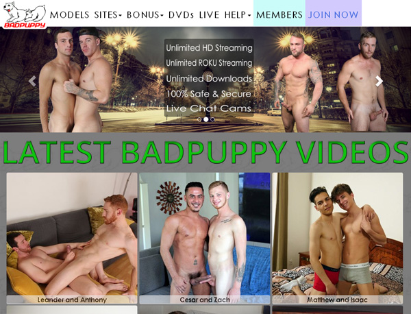 Badpuppy.com Free Account