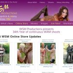 How Much Does WSM Productions Cost