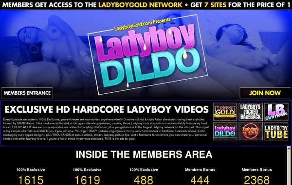 Ladyboy-dildo.com New Account