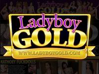 Ladyboy-dildo.com asia