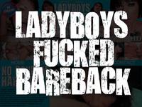 Ladyboy-dildo.com ladyboy sex