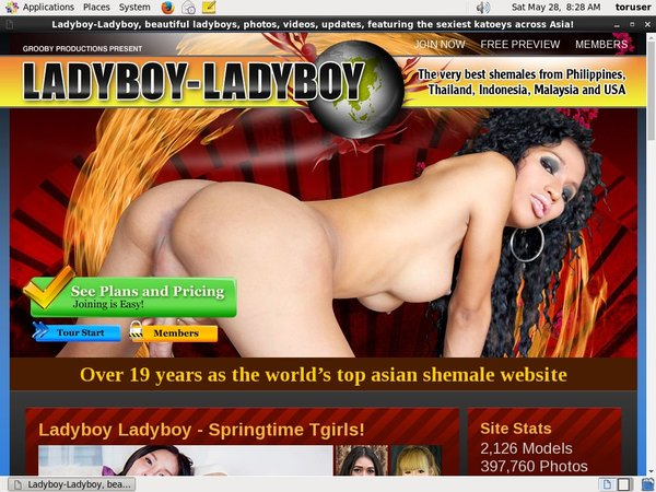 Working Ladyboy Ladyboy Password