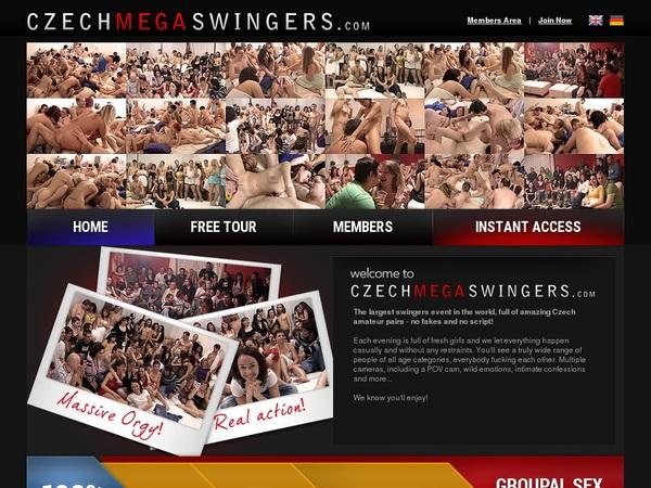 Czech Mega Swingers Account Logins